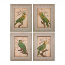 Sterling Industries 151-018/S4 - Parrot And Palm I Through IV - Fine Art Giclees Under Glass
